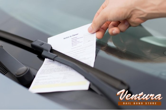 What Happens When You Fail to Pay Parking Tickets