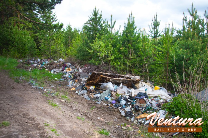 What Happens if You're Caught Illegally Dumping Waste in California